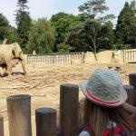 Zoo Krefeld_2_1